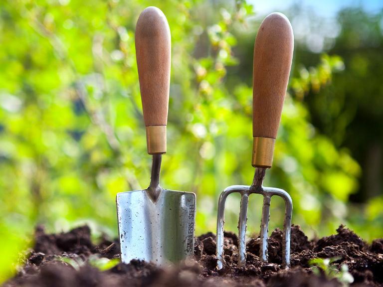 narzędzia ogrodnicze wbite wziemię